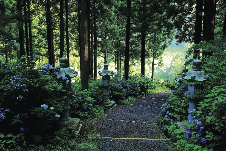季節ごとに出合える <br/>日本の青のスポット20!<br/>【ブルーに恋して!】