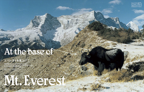 ネパール特集号がついに発売!<br/> 取材記事を一部ご紹介します!