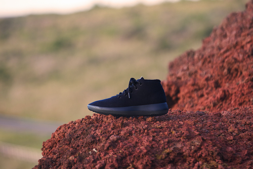 allbirds_1221_01.jpg